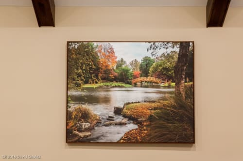 Photography by Coblitz Creative Concepts, LLC seen at Private Residence, Des Peres - 4x5' framed giclee print of Missouri Botanical Garden Fall