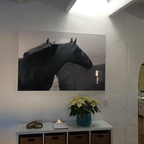 Photography by Andrea Bonfils at Private Residence, Santa Fe - Hugs (SF Wild Horses)