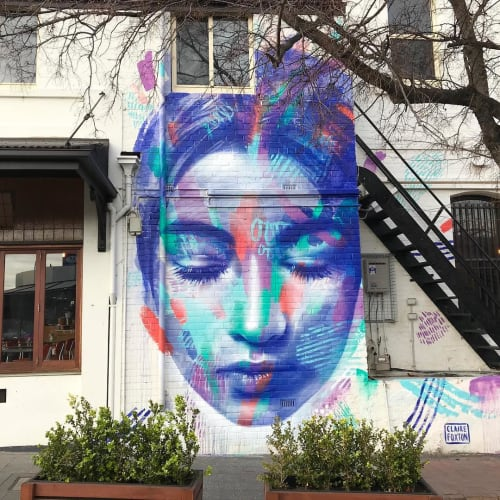 Street Murals by Claire Foxton seen at Cotto Prospect, Prospect - Giulia Canala