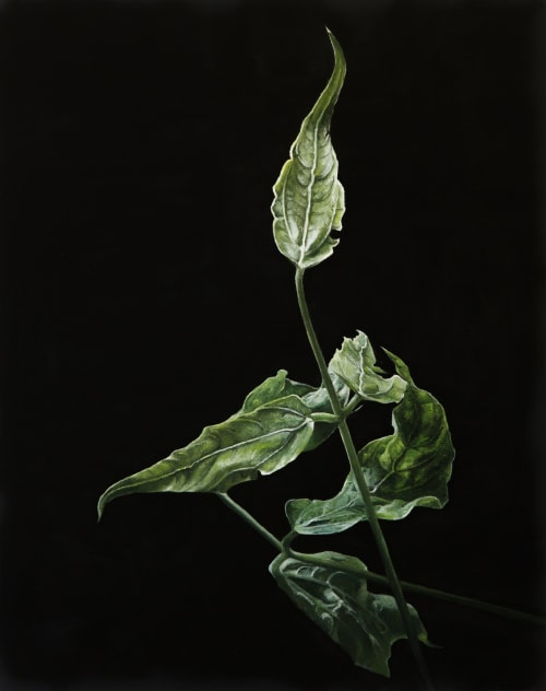 Paintings by Patty B. Driscoll seen at Canary Gallery LLC, Birmingham - Kudzu inspired paintings