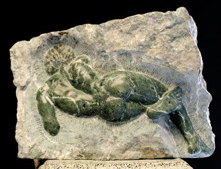 Manuel Palos Sculpture - Sculptures and Art