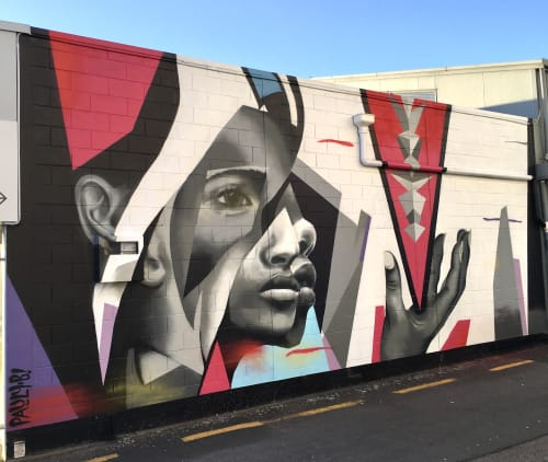 Street Murals by Pauly B seen at Service Lane 13, Taupo - Fracture