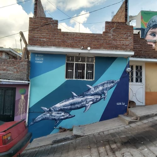 Street Murals by Oceane Isla seen at Private Residence, Zacatecas - Dolphins