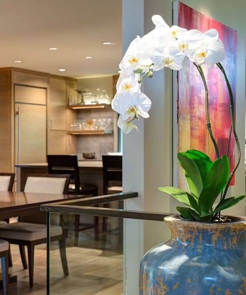 Interior Design by Tammie Ladd Design, Inc. seen at Private Residence, Spokane - Modern Renovation