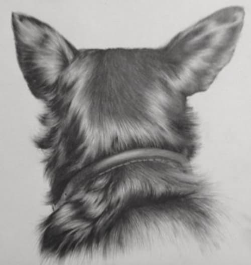 Dog Reversed Portrait   Paintings by Nettie Wakefield