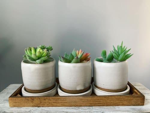 Linda Peterson | Mud 'n Biscuits Ceramics - Tableware and Planters & Vases