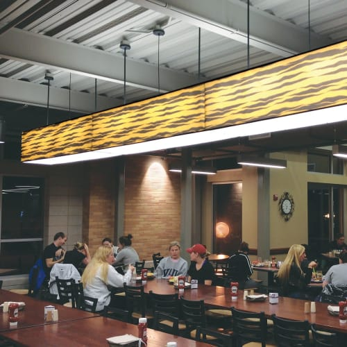Pendants by ILEX Architectural Lighting seen at University of Missouri, Columbia - Tiger Shade Pendant