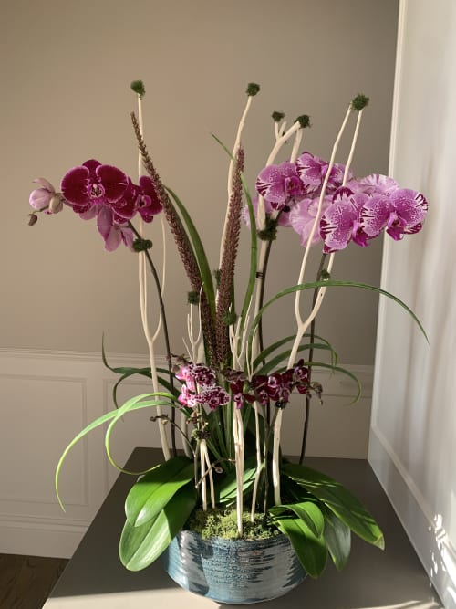 Floral Arrangements by Fleurina Designs seen at Private Residence, Los Gatos - Orchid Arrangement