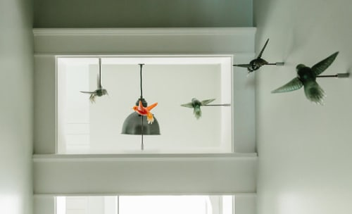 Sculptures by Clancy Designs Glass Studio seen at Private Residence, Jamestown - Dreams in Flight