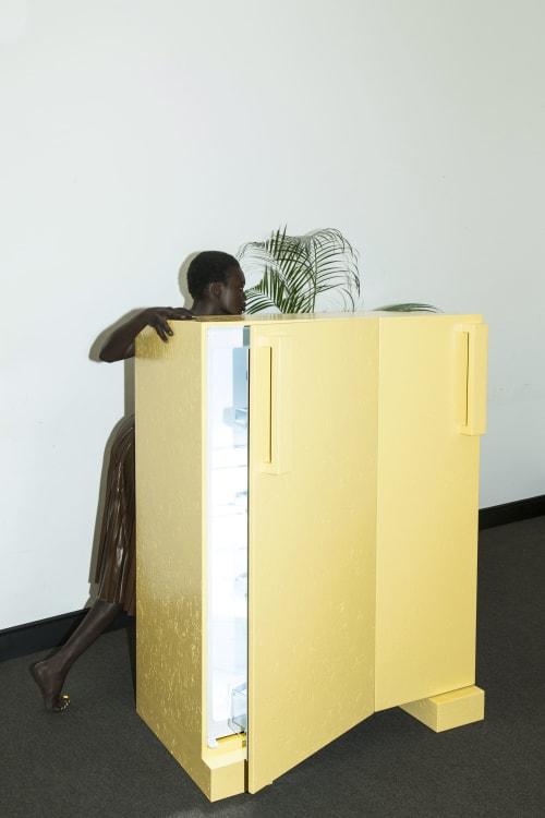 Furniture by Royaards Furnituremaker seen at Amsterdam, Amsterdam - Kelvin Fridge Lo and Behold