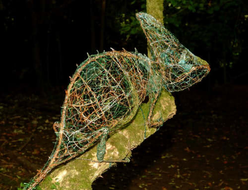 Public Sculptures by Fiona Campbell seen at All Hallows School, East Cranmore - Chameleon