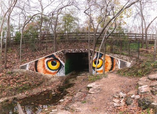Street Murals by Anat Ronen seen at Houston Arboretum & Nature Center, Houston - The eyes of an owl