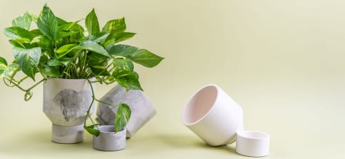 The Northern Habitat - Planters & Vases and Planters & Garden