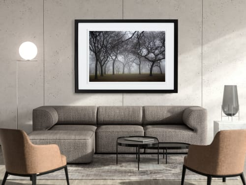 Photography by Yasmin Tajik Fine Art Prints seen at Private Residence, Gainesville - Misty Trees