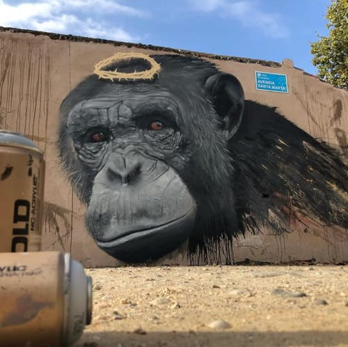 Murals by Konestilo seen at Huelva, Huelva - Redemption Monkey