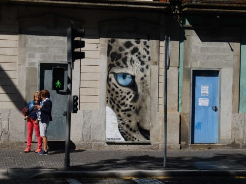 Street Murals by Kilos seen at Rotunda da Boavista, Porto - Leopard Eye