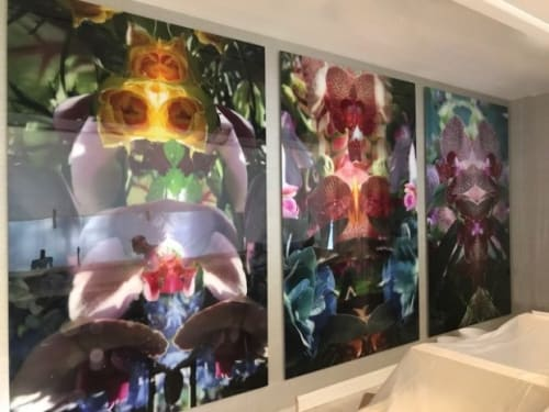 Photography by Andrea Bonfils at Hilton Ocala, Ocala - Submerged Garden Series