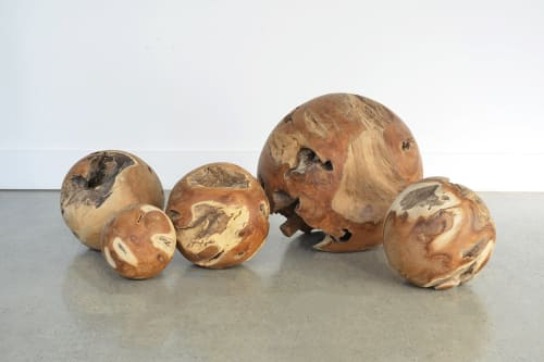 Teak Root Ball Sculpture   Sculptures by From the Source