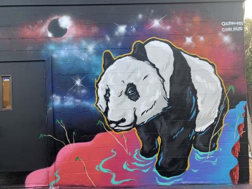 Murals by Lopan 4000 seen at Leftys Taproom, Sacramento - Space Panda Mural