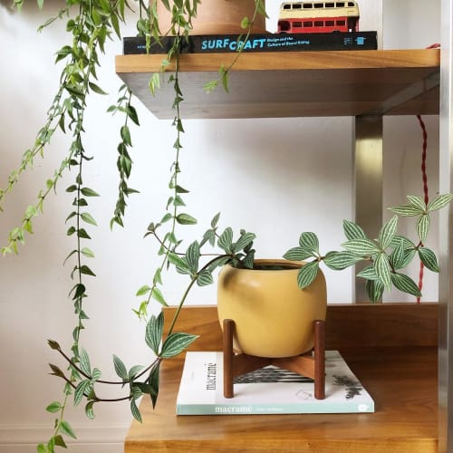 Vases & Vessels by Case Study Ceramics by Modernica seen at Work Hard Plant Hard, Encinitas - Ceramic Planter with Stand