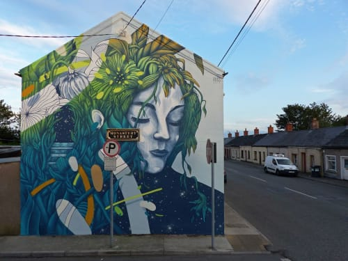 Street Murals by Russ seen at Monastery Street, Waterford - EPHEMERA