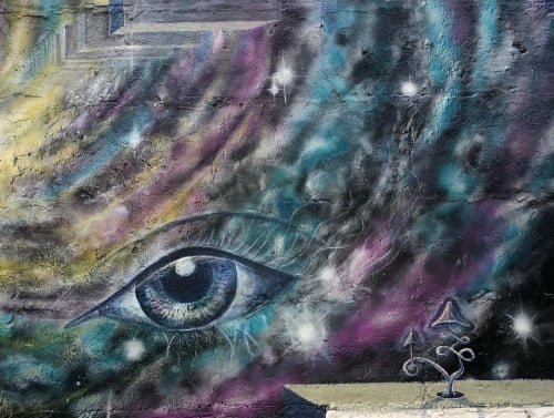 Street Murals by Mysterylias Arts seen at Miami, Miami - For those who seek