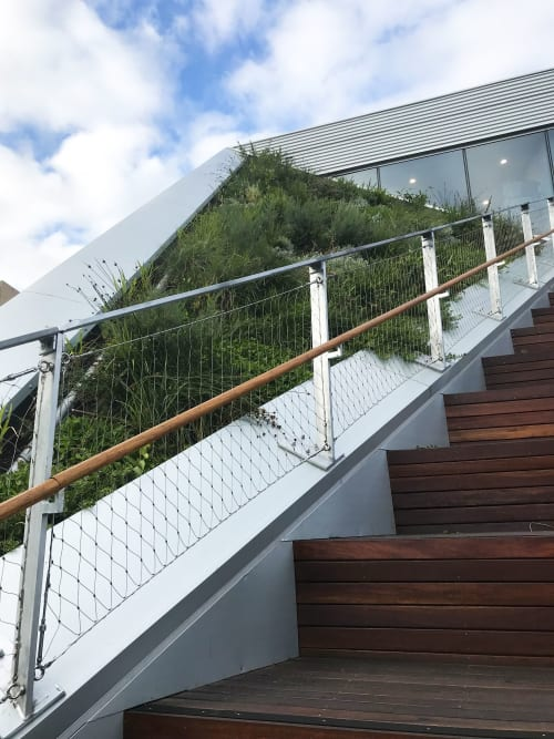 Plants & Landscape by Fytogreen Australia seen at University of South Australia City West Campus, Adelaide - Roof Garden - upto 42 deg Slope