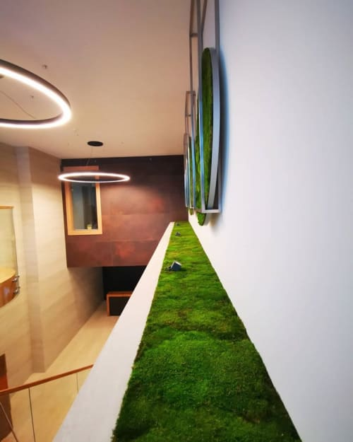Wall Treatments by Atelier mchu seen at Private Residence, Gdynia - Moss instalation