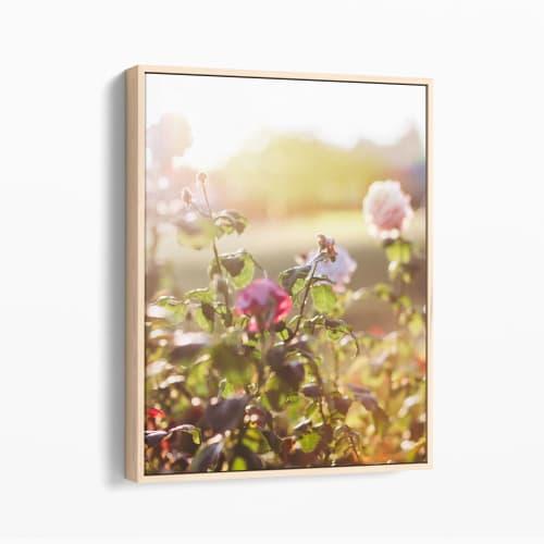 Pink Light Flora | Photography by Kara Suhey Print Shop