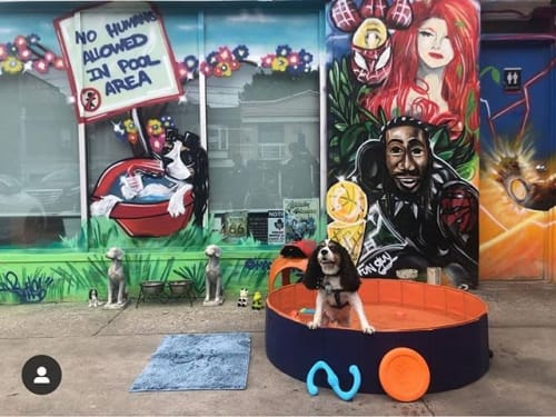 Magic F WonG - Murals and Art