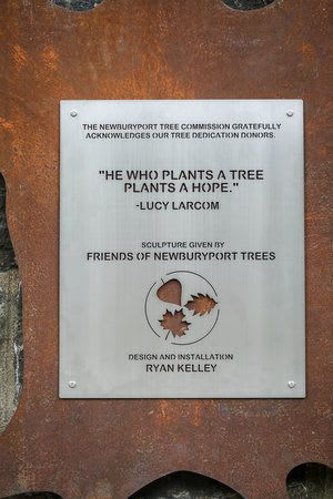 Public Sculptures by Wire By Ryan (Ryan Kelley) seen at Newburyport, Newburyport - Friends of Newburyport Trees Donor Tree