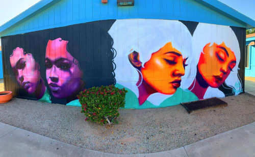 Street Murals by Nyla Lee seen at New School for the Arts & Academics, Tempe - Sista sista