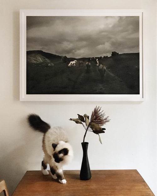 Photography by Susanne Walström seen at Private Residence, Stockholm - Photography