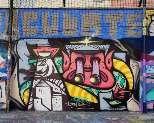 Street Murals by PALLADIN seen at Lyon, Lyon - Grffiti Mural