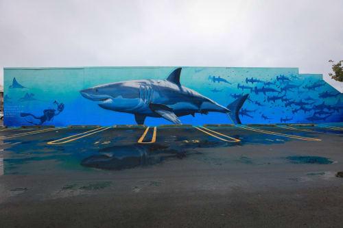 Street Murals by Freeman White seen at 77 Raffles Street, Napier - Sharkwater