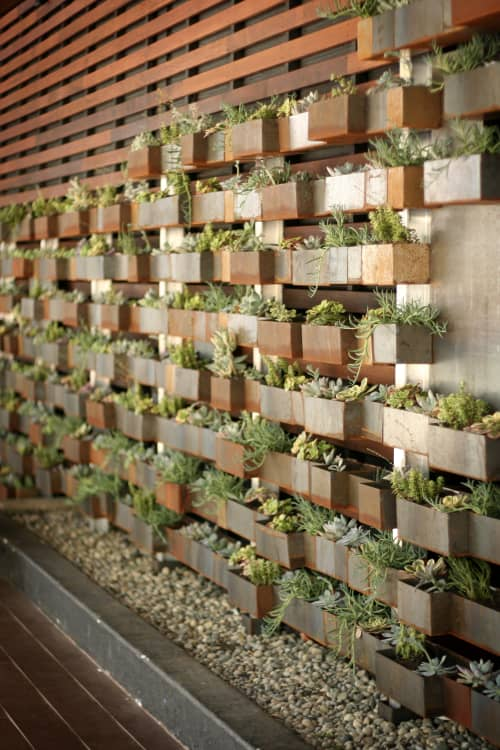 Sculptures by Alexis Laurent seen at Chambers, San Francisco - Living Wall Installation