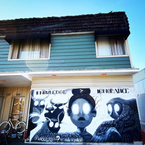 Knowledge > Ignorance Mural | Street Murals by WHOSVLAD | PlayNice, LLC in Brooklyn