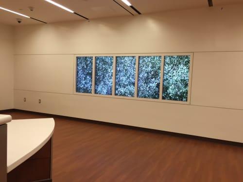 Art & Wall Decor by Paul Kos seen at Zuckerberg San Francisco General Hospital and Trauma Center, San Francisco - Quaking Aspens