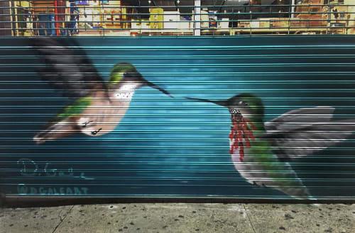 Calliope Hummingbird   Murals by Kristy McCarthy   Apollo Pharmacy in New York