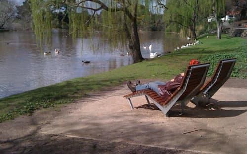 Chairs by Andrew Gibbs seen at Coburg Lake Reserve, Coburg North - Coburg Lake Chaise