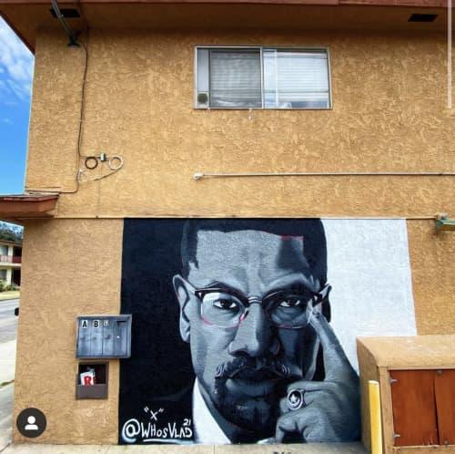 Malcom X Mural | Street Murals by WHOSVLAD