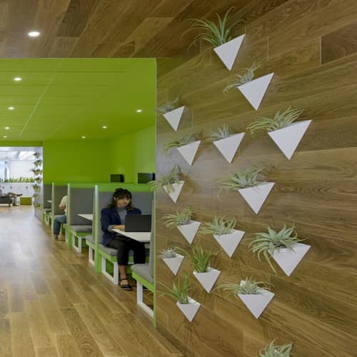 Vases & Vessels by Fernweh Woodworking at New Relic, San Francisco - Hanging Geometric Planters
