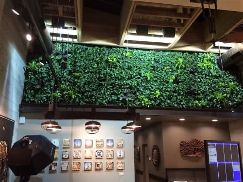Plants & Flowers by Habitat Horticulture seen at Peet's Coffee, San Francisco - Living Wall