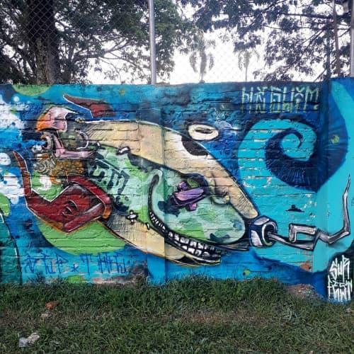 Street Murals by Léo Araújo seen at Ibagué, Ibagué - Street Mural