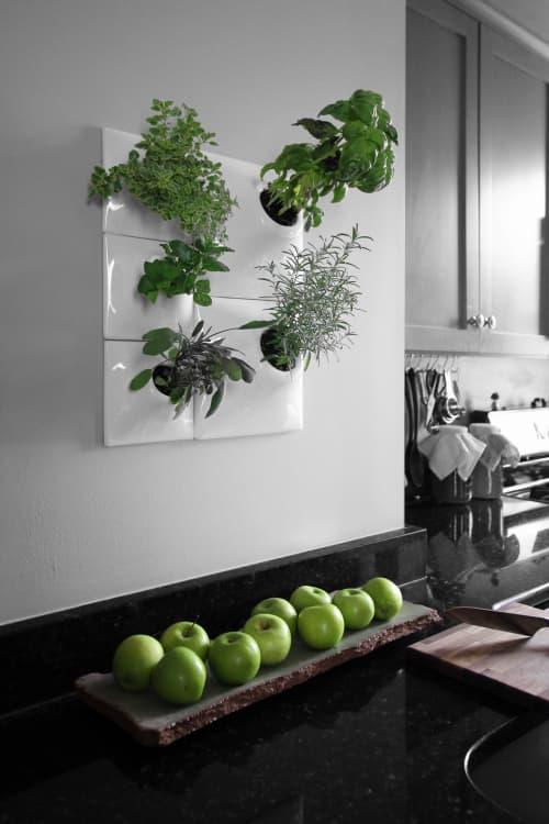 Indoor Herb Wall Planter Greenwall - Pandemic Design Studio   Vases & Vessels by Pandemic Design Studio   Philadelphia in Philadelphia
