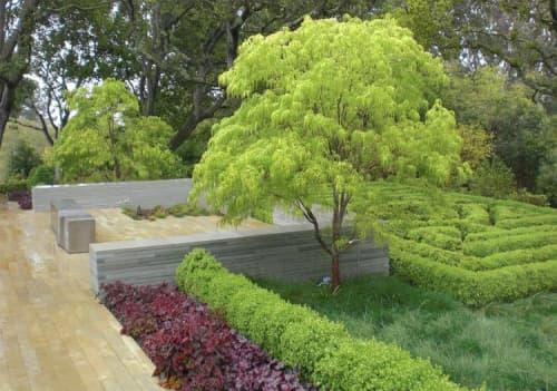 Plants & Landscape by Zeterre Landscape Architecture seen at Private Residence, Woodside - Woodside Retreat