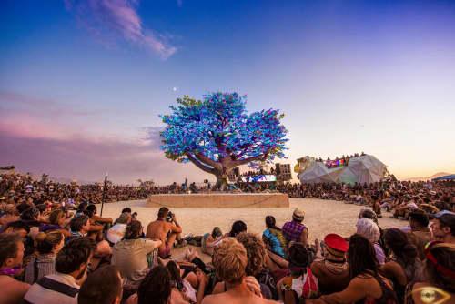 Art Curation by DRIFT seen at Burning Man 2017 - Tree of Ténéré