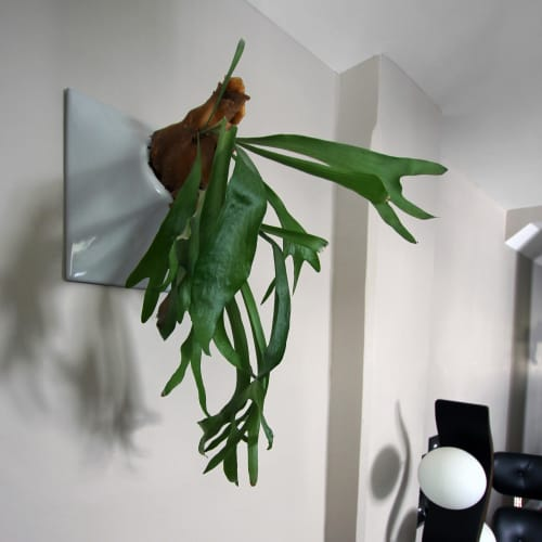 Node 12 Inch Ceramic Wall Planter Living Sculpture Wall Art | Vases & Vessels by Pandemic Design Studio