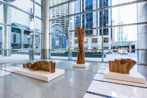 Lobby Installation   Public Sculptures by Barbara Cooper   353 North Clark, Chicago, IL in Chicago