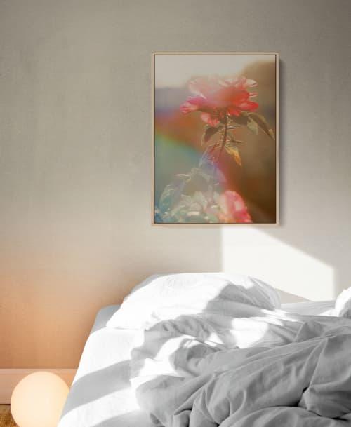 Colour Trip   Photography by Kara Suhey Print Shop